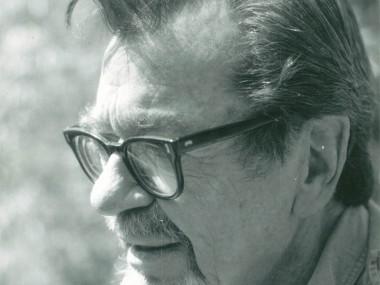 Novelist and teacher John Williams