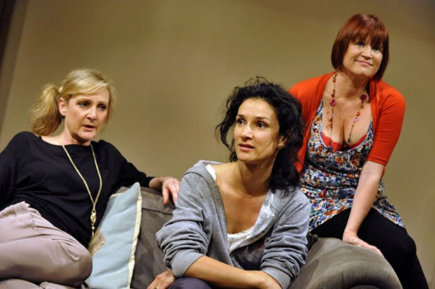 Lesley Sharp, Indira Varma and Lisa Palfrey in Ingredient X. Photo: Keith Pattison