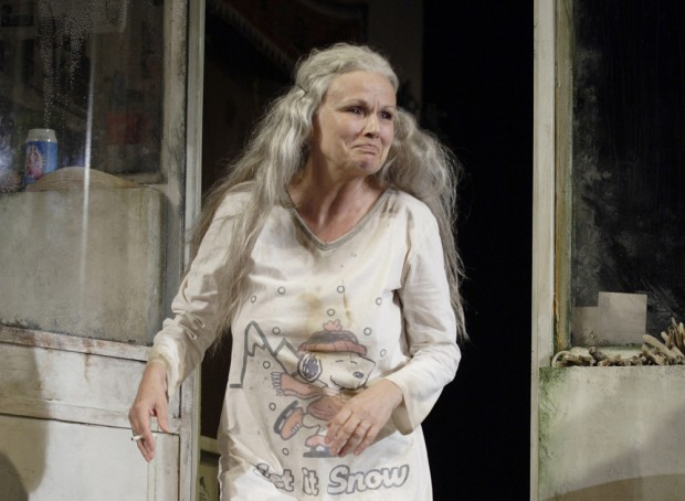 Julie Walters in The Last of the Haussmans. Photo: Catherine Ashmore