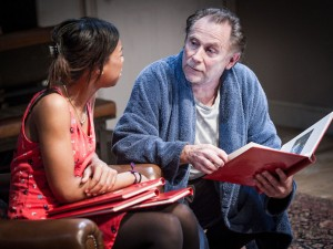 Pippa Bennett-Warner and Danny Webb in The Witness. Photo: Robert Workman